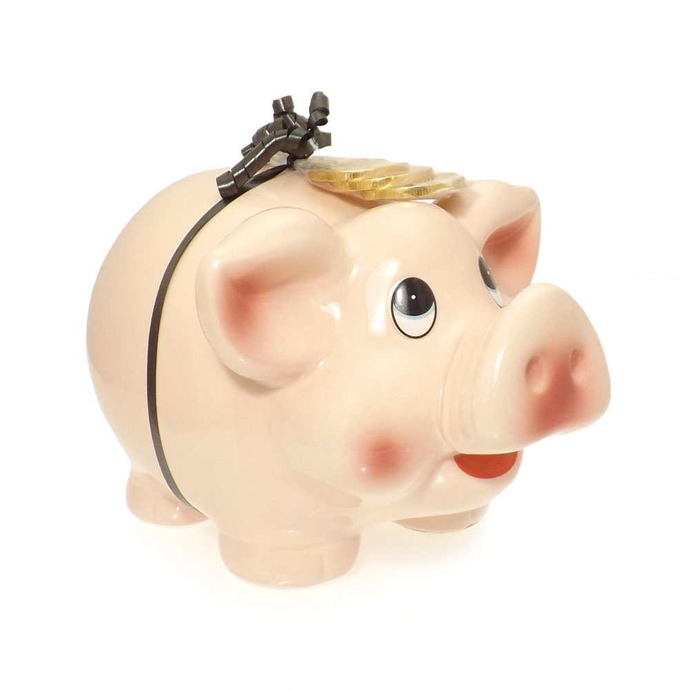 large piggy bank money box