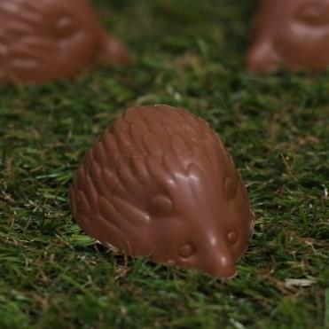 Milk Chocolate Hedgehog